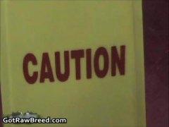 Oznake: lizanje guze, međurasni, kurac, crnci.