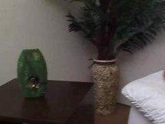علامات: جوارب طويلة, برازيلية, شرابات شبكة, متحولون.