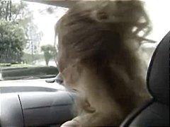 टैग: कार, भयंकर चुदाई, चुस्त.
