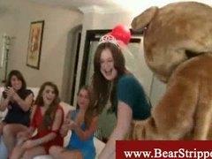 Taggar: voyeur, björn, klädd kvinna naken man, fest.