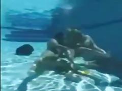 태그: 파티, 수영장.