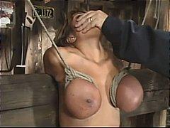 टैग: पोर्नस्टार, बड़े स्तन.