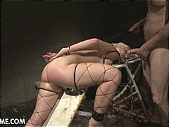 टैग: वीर्य निकालना, गुलाम, उंगली, मुखमैथुन.