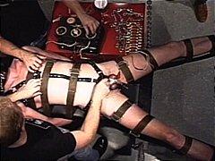 Žymės: vibratorius.