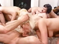 Ознаке: grupnjak, pornićarka, staromodni pornići.