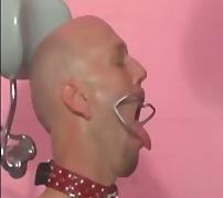 Taggar: bdsm, strap-on-dildo, sexleksak, dominant kvinna.