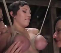 टैग: मशीन, बंधक परपीड़न सेक्स, गुलाम.