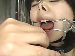 Sildid: jaapani, nüpeldamine, sidumine ja sadomaso.