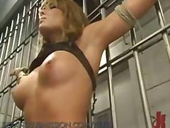 टैग: सनकी, बड़े स्तन, दर्दनाक, मुखमैथुन.