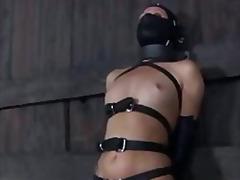 Ознаке: hardkor, dominacija, vezivanje, fetiš.