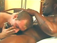 Tags: doggy-style, pwet, negra, interracial.