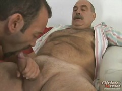 gay bears ass pounding.