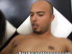 टैग: लंड, हिजड़ा.