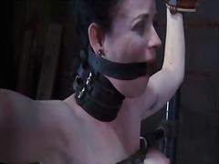 Thẻ: làm nhục, nô lệ, gái, nô lệ tình dục.