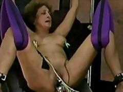 टैग: बंधक परपीड़न सेक्स, अधेड़ औरत.