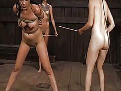 Ознаке: ponižavanje, vezivanje, devojka, rob.
